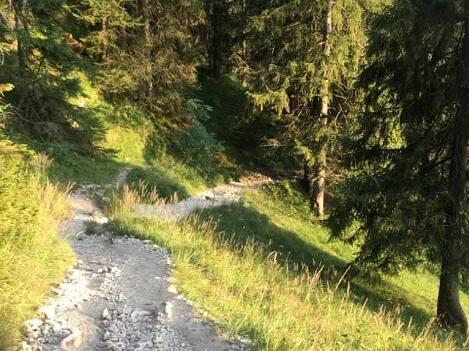 Der Wanderweg hoch zur Bad Kissinger Hütte